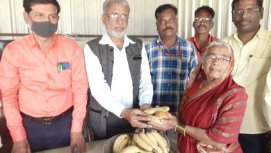 Photo of पत्रकार दिनानिमित्त इंडियन रिपोर्टस असोसिएशन तर्फे 'दर्पण दिनी' वृध्दाश्रमात फळ वाटप
